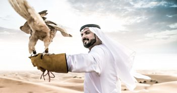 The Desert with Falcon Bird, Qatar