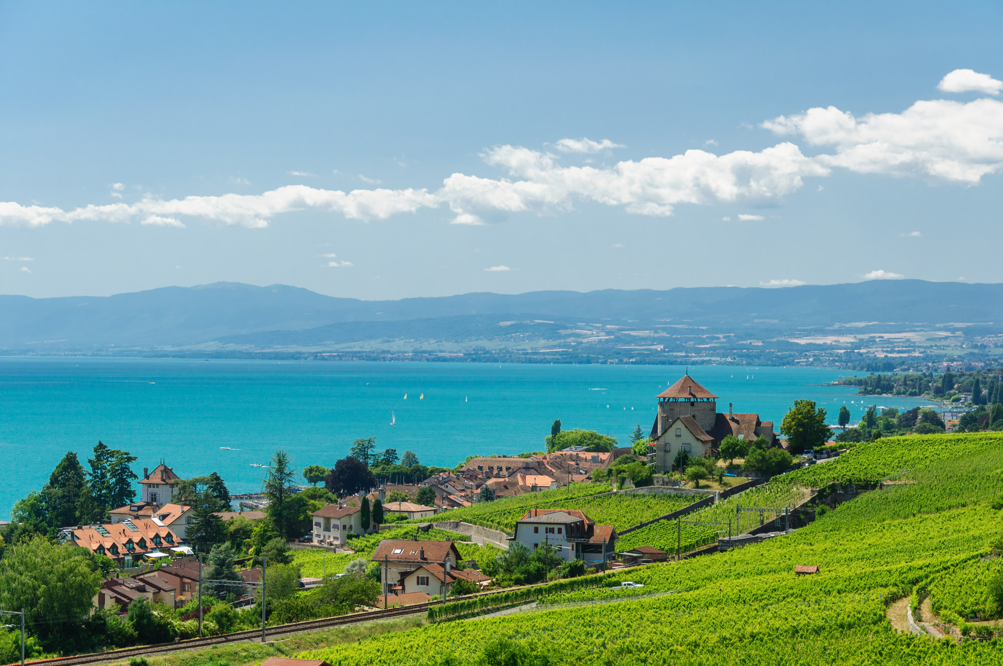 Lavaux Vineyard Terraces Lausanne