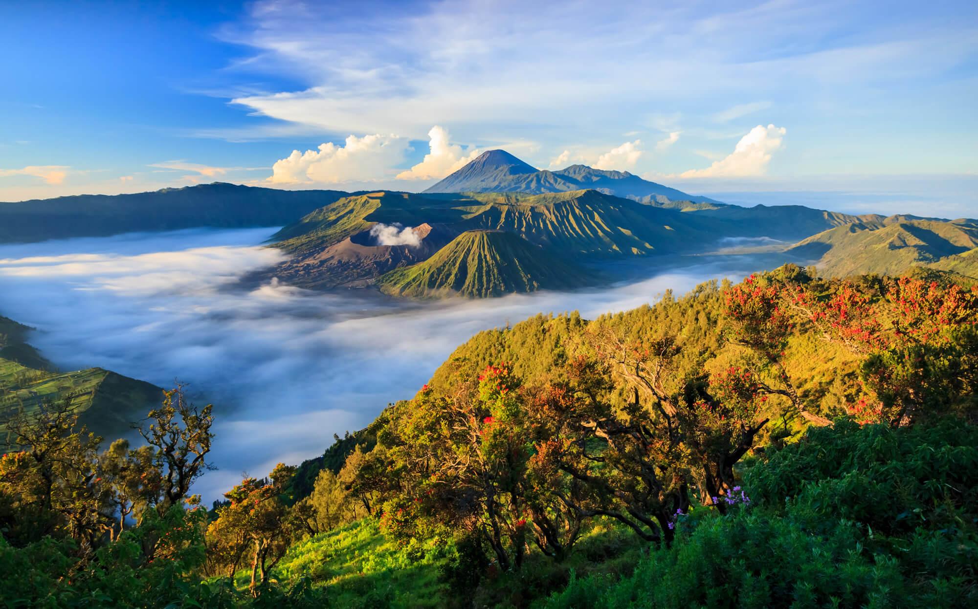Bromo Volcano, Tengger Semeru National Park