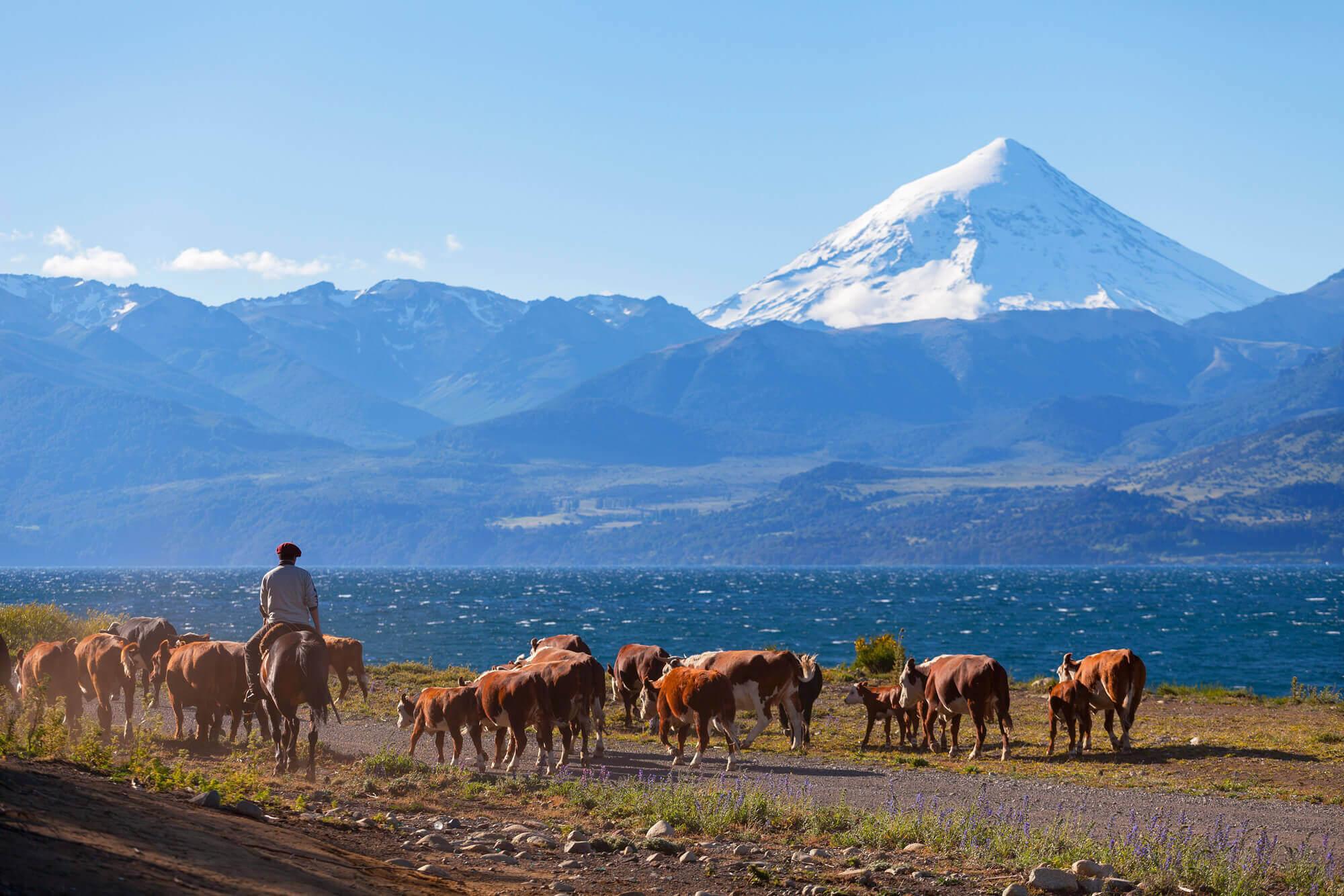 Lanin, Patagonia, Argentina