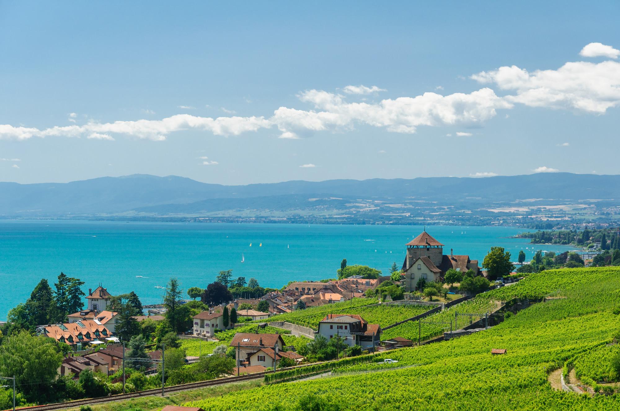 Lavaux Vineyard Terraces Lausanne